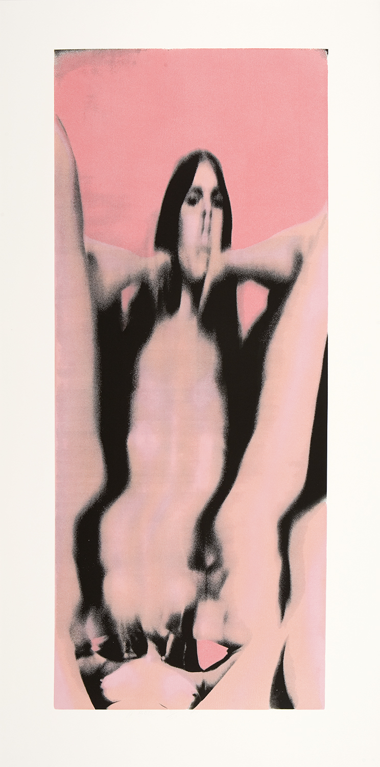 "Untitled #6, 1974Five-color screenprint with flocking84"" x 42""Edition: 60; XX"