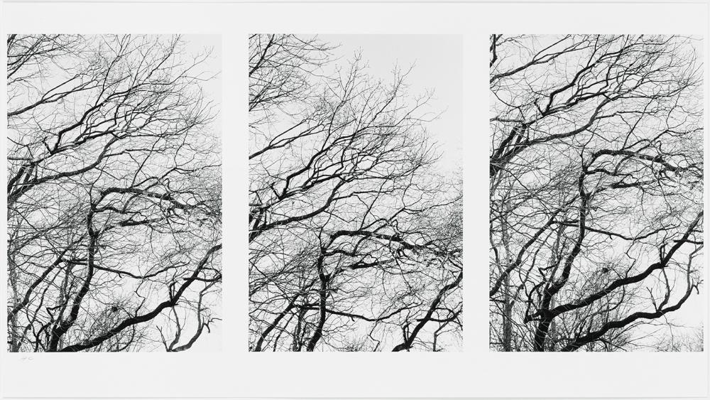 b-barr-winter-left
